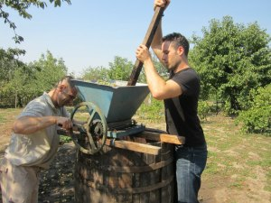Vitalie, on the left, is cranking the crusher (zdrobitor) as I am pushing the grapes down through the funnel to make the process easier on his forearm.