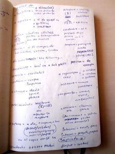 My notes in Romanian.